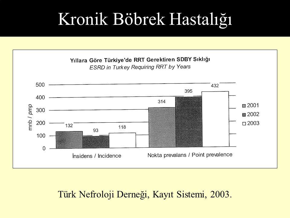 Subtotal Nefrektomili Sıçanlarda Antihipertansif Tedavi Anderson, Rennke, Brenner: J Clin Invest 77:1993-2000, 1986