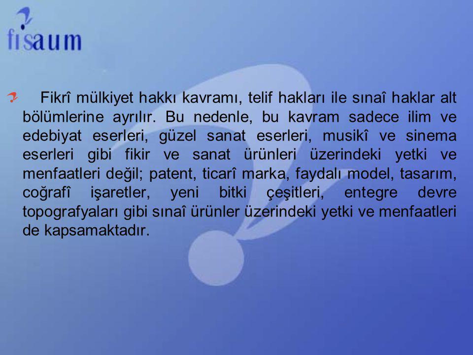 Bu durum ilaç sektörü örneğinde olduğu gibi uluslararası şirketlerin tekel oluşturmakta Türk patent sistemini kullandıkları anlamına gelmektedir.