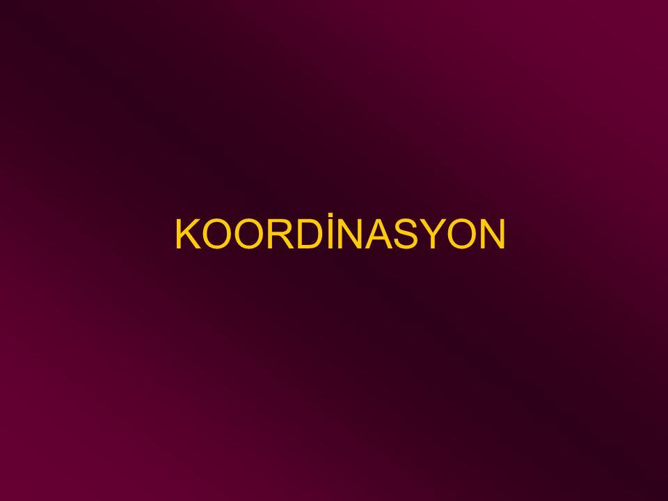 KOORDİNASYON