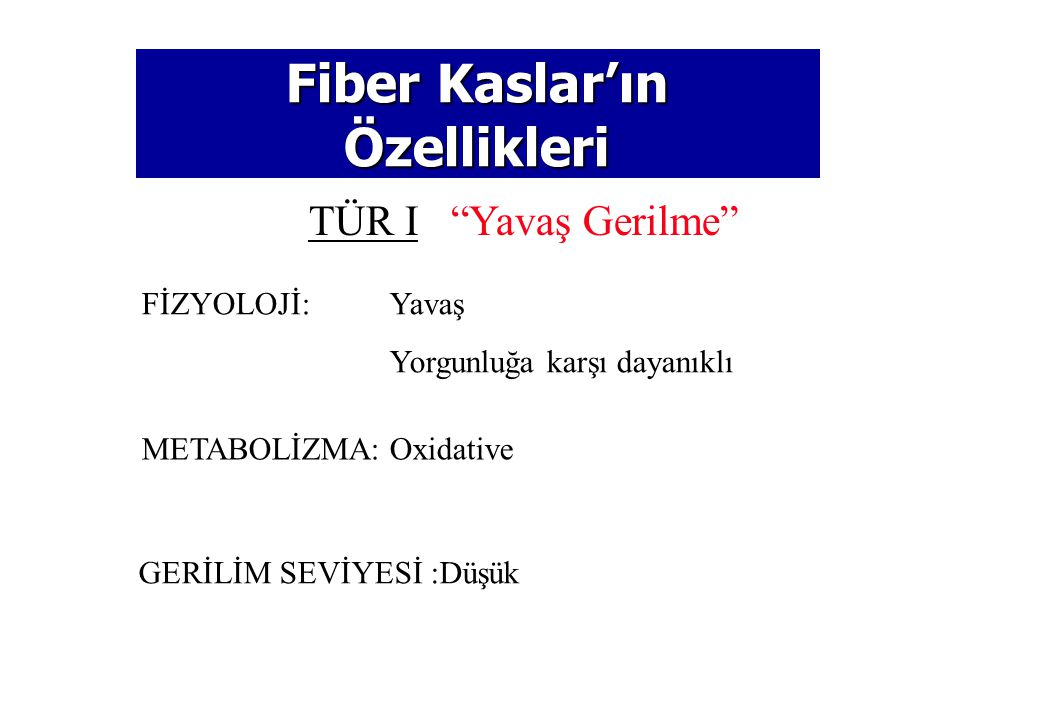 © 2005 The McGraw-Hill Companies, Inc. All rights reserved. Fiber Kas Türleri (I&II) Fiber Kas Türleri (I&II) Tür 1 Tür 2