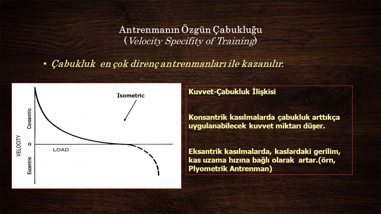 Antrenmanın Özgün Çabukluğu (Velocity Specifity of Training) Çabukluk en çok direnç antrenmanları ile kazanılır. Isometric Kuvvet-Çabukluk İlişkisi Ko