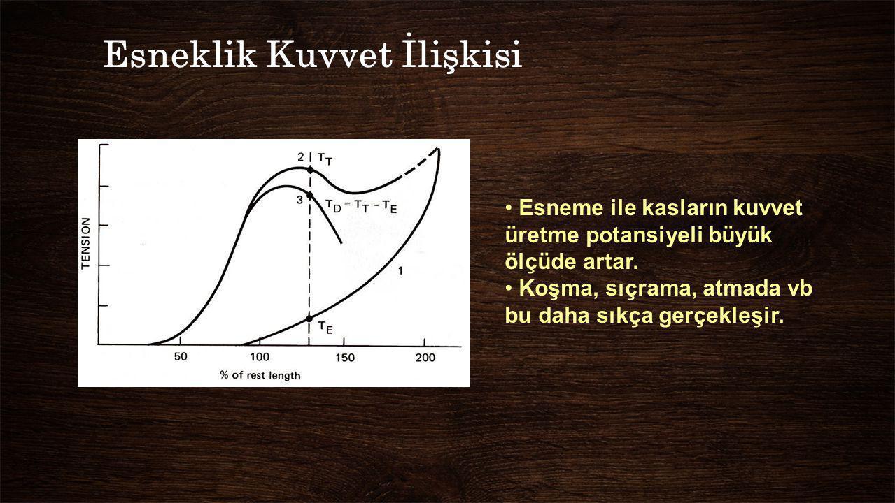 Esneklik Kuvvet İlişkisi Esneme ile kasların kuvvet üretme potansiyeli büyük ölçüde artar. Koşma, sıçrama, atmada vb bu daha sıkça gerçekleşir.