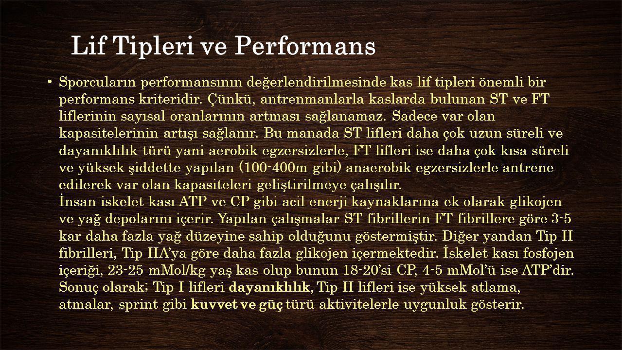 Lif Tipleri ve Performans Sporcuların performansının değerlendirilmesinde kas lif tipleri önemli bir performans kriteridir. Çünkü, antrenmanlarla kasl