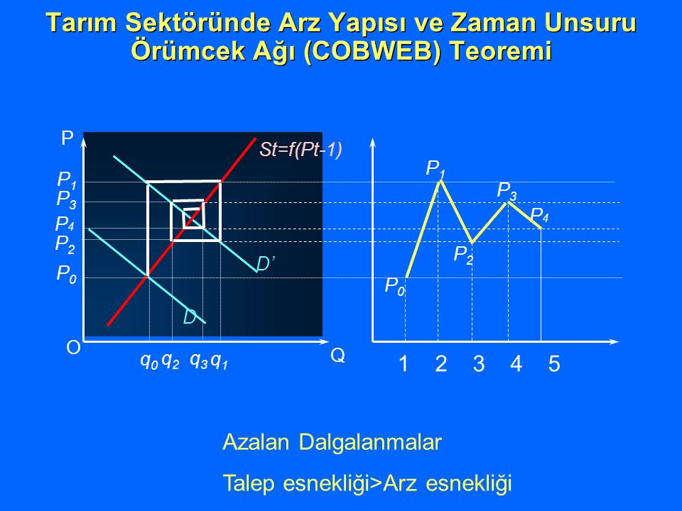Tarım Sektöründe Arz Yapısı ve Zaman Unsuru Örümcek Ağı (COBWEB) Teoremi Azalan Dalgalanmalar Talep esnekliği>Arz esnekliği O Q P D D' St=f(Pt-1) P2P2