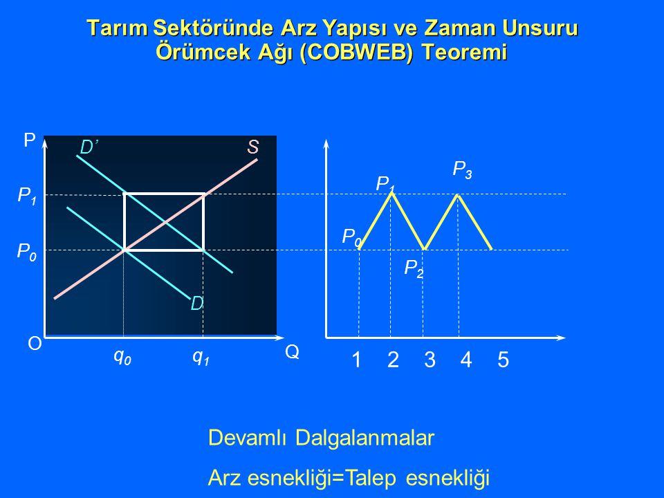 O Q P P0P0 q0q0 P1P1 q1q1 D D' S P0P0 P1P1 P2P2 P3P3 1 2 3 4 5 Tarım Sektöründe Arz Yapısı ve Zaman Unsuru Örümcek Ağı (COBWEB) Teoremi Devamlı Dalgal