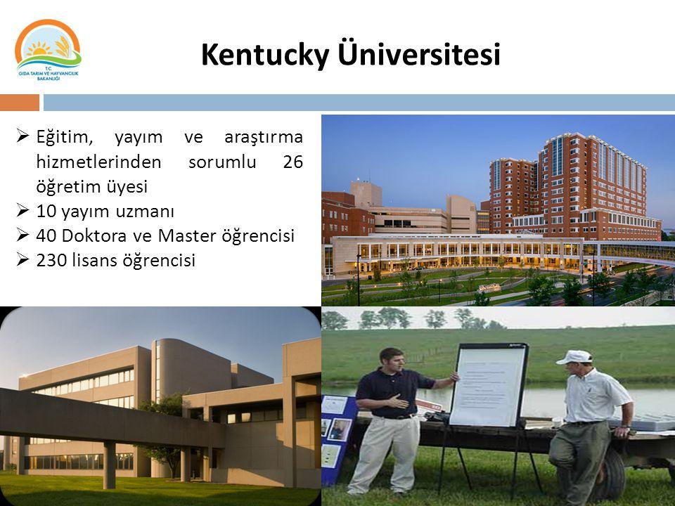 4 Kentucky Üniversitesi  Eğitim, yayım ve araştırma hizmetlerinden sorumlu 26 öğretim üyesi  10 yayım uzmanı  40 Doktora ve Master öğrencisi  230