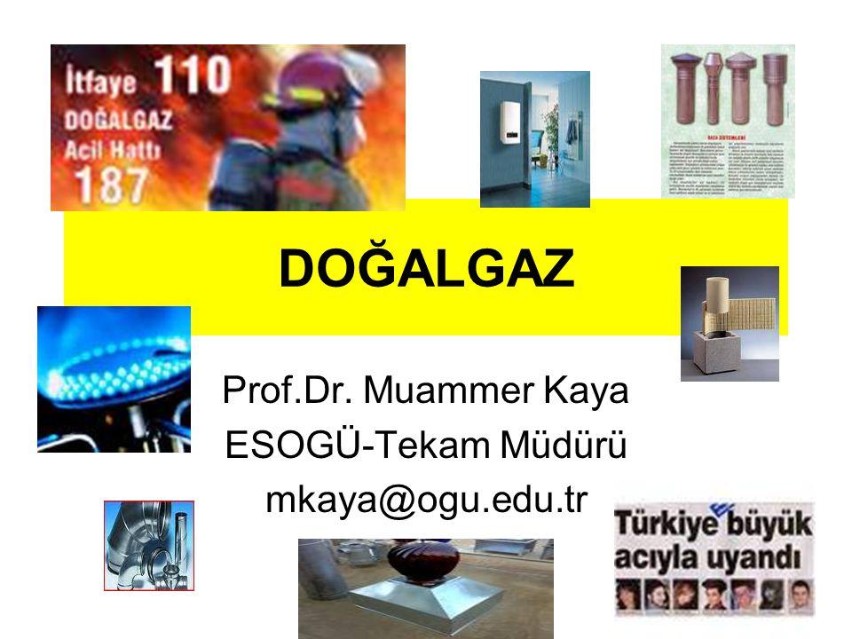 DOĞALGAZ Prof.Dr. Muammer Kaya ESOGÜ-Tekam Müdürü mkaya@ogu.edu.tr