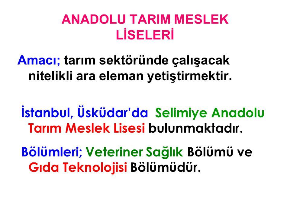 ANADOLU TARIM MESLEK LİSELERİ Amacı; tarım sektöründe çalışacak nitelikli ara eleman yetiştirmektir. İstanbul, Üsküdar'da Selimiye Anadolu Tarım Mesle