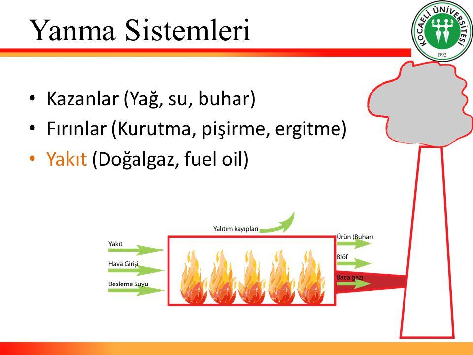 Yanma Sistemleri Kazanlar (Yağ, su, buhar) Fırınlar (Kurutma, pişirme, ergitme) Yakıt (Doğalgaz, fuel oil)