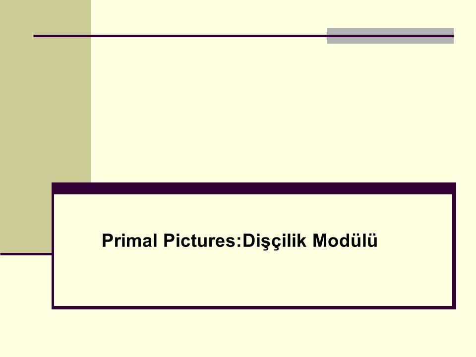 Animasyon dosyası kaydetme/kopyalama Bu animasyonu kaydetmek ve Powerpoint gibi programlarda kullanmak için bu ikona tıklayınız