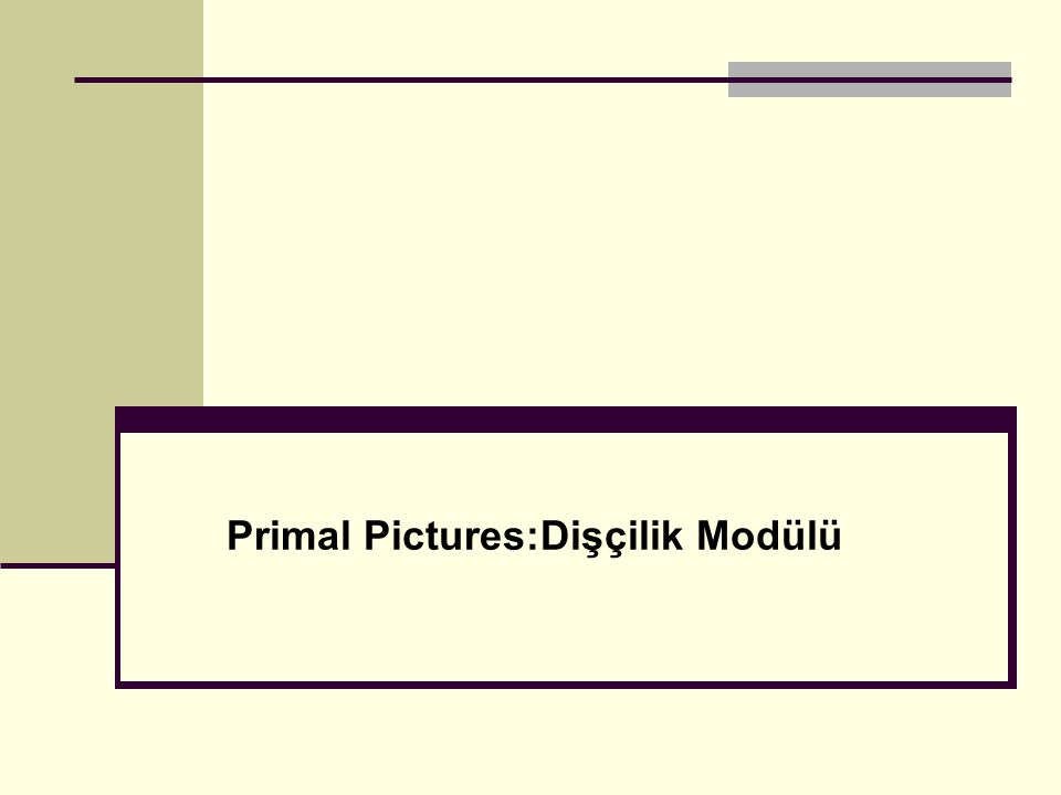 Primal Pictures:Dişçilik Modülü