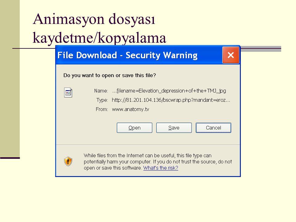 Animasyon dosyası kaydetme/kopyalama