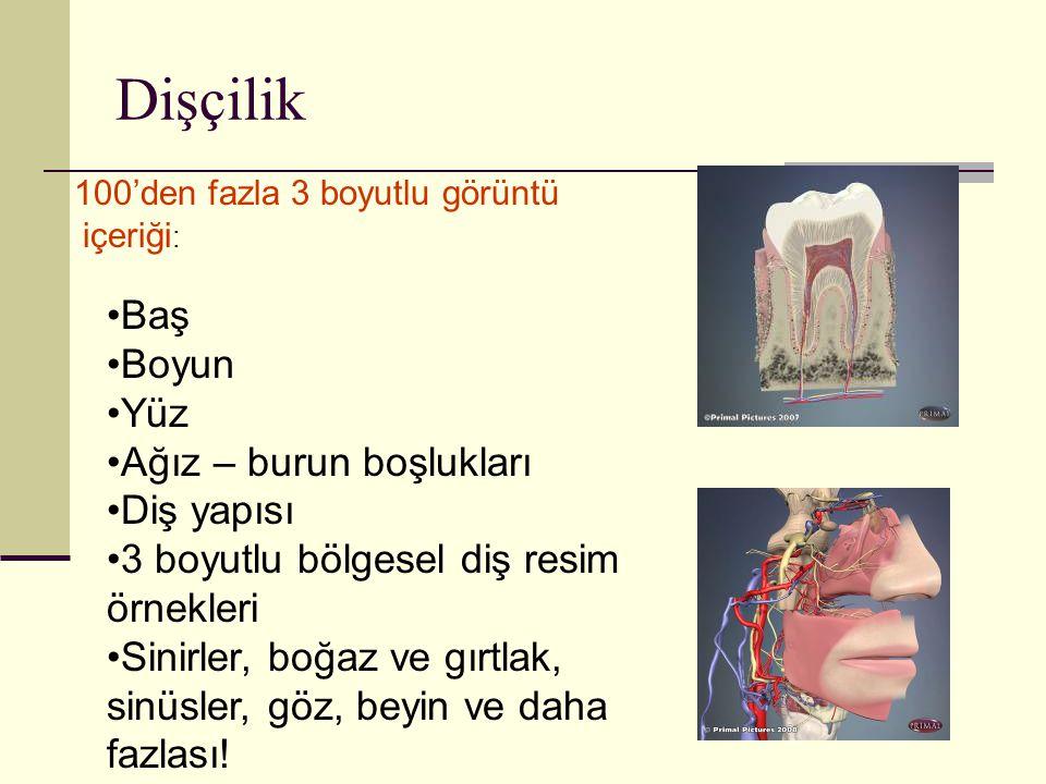 Dişçilik 100'den fazla 3 boyutlu görüntü içeriği : Baş Boyun Yüz Ağız – burun boşlukları Diş yapısı 3 boyutlu bölgesel diş resim örnekleri Sinirler, b