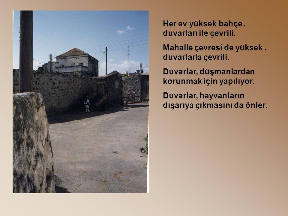 .Her ev yüksek bahçe duvarları ile çevrili..Mahalle çevresi de yüksek duvarlarla çevrili.