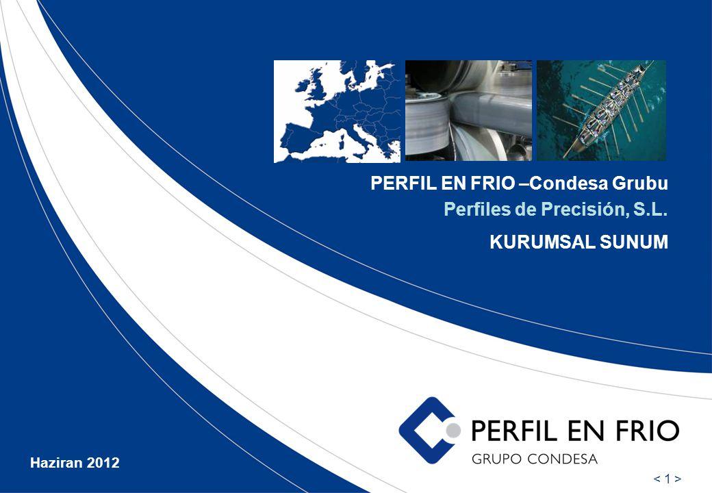 PERFIL EN FRIO –Condesa Grubu Perfiles de Precisión, S.L. KURUMSAL SUNUM Haziran 2012