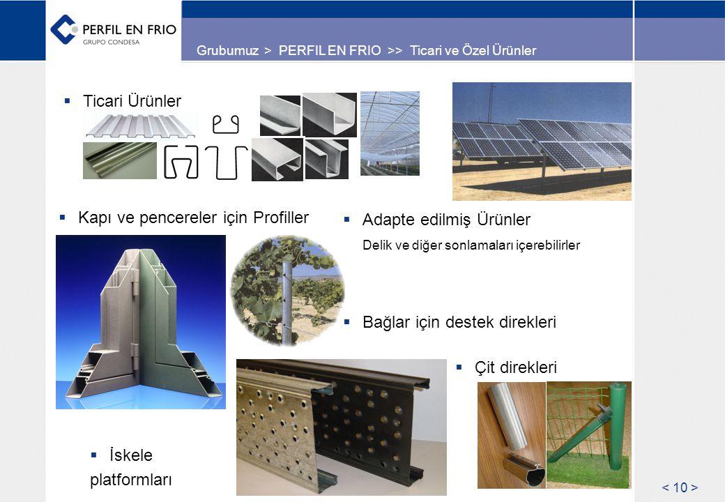 Grubumuz > PERFIL EN FRIO >> Ticari ve Özel Ürünler  Adapte edilmiş Ürünler Delik ve diğer sonlamaları içerebilirler  Ticari Ürünler  Kapı ve pencereler için Profiller  Bağlar için destek direkleri  İskele platformları  Çit direkleri