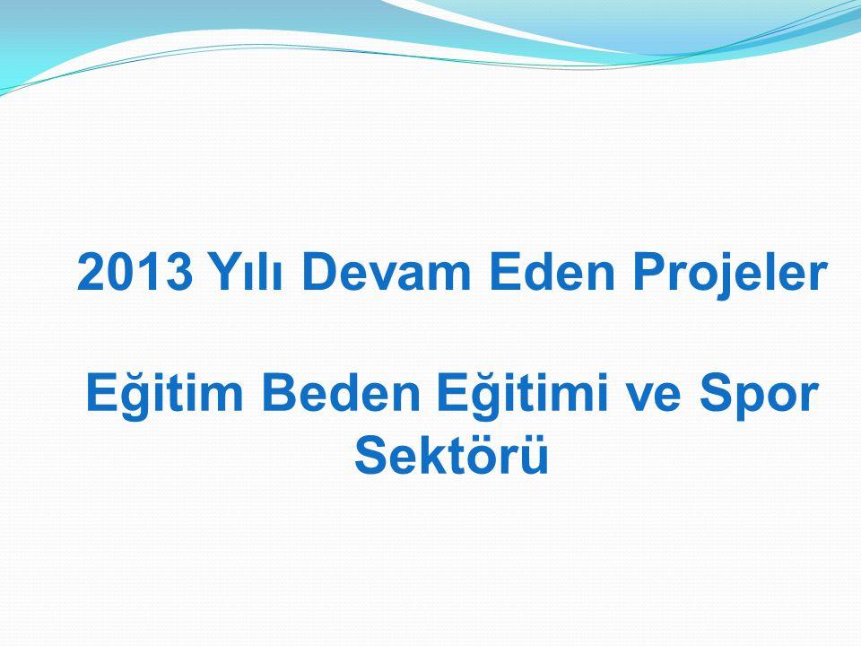 2013 Yılı Devam Eden Projeler Eğitim Beden Eğitimi ve Spor Sektörü
