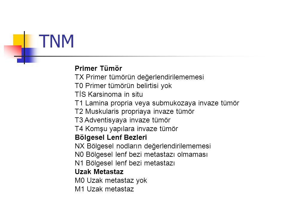 TNM Primer Tümör TX Primer tümörün değerlendirilememesi T0 Primer tümörün belirtisi yok TİS Karsinoma in situ T1 Lamina propria veya submukozaya invaze tümör T2 Muskularis propriaya invaze tümör T3 Adventisyaya invaze tümör T4 Komşu yapılara invaze tümör Bölgesel Lenf Bezleri NX Bölgesel nodların değerlendirilememesi N0 Bölgesel lenf bezi metastazı olmaması N1 Bölgesel lenf bezi metastazı Uzak Metastaz M0 Uzak metastaz yok M1 Uzak metastaz