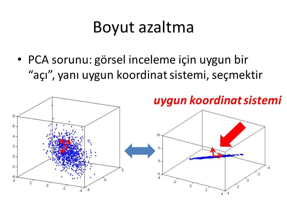 Boyut azaltma PCA sorunu: görsel inceleme için uygun bir açı , yanı uygun koordinat sistemi, seçmektir uygun koordinat sistemi