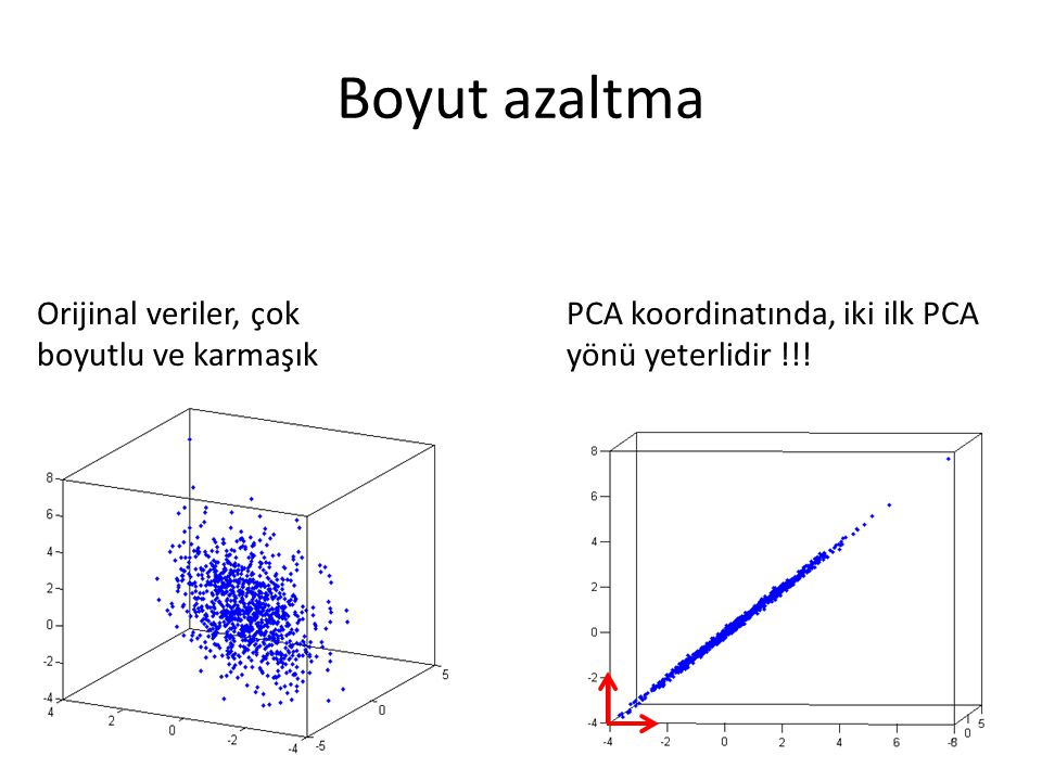 Boyut azaltma Orijinal veriler, çok boyutlu ve karmaşık PCA koordinatında, iki ilk PCA yönü yeterlidir !!!