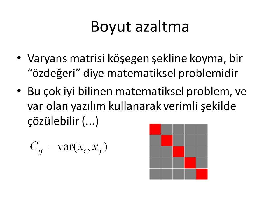 """Boyut azaltma Varyans matrisi köşegen şekline koyma, bir """"özdeğeri"""" diye matematiksel problemidir Bu çok iyi bilinen matematiksel problem, ve var olan"""