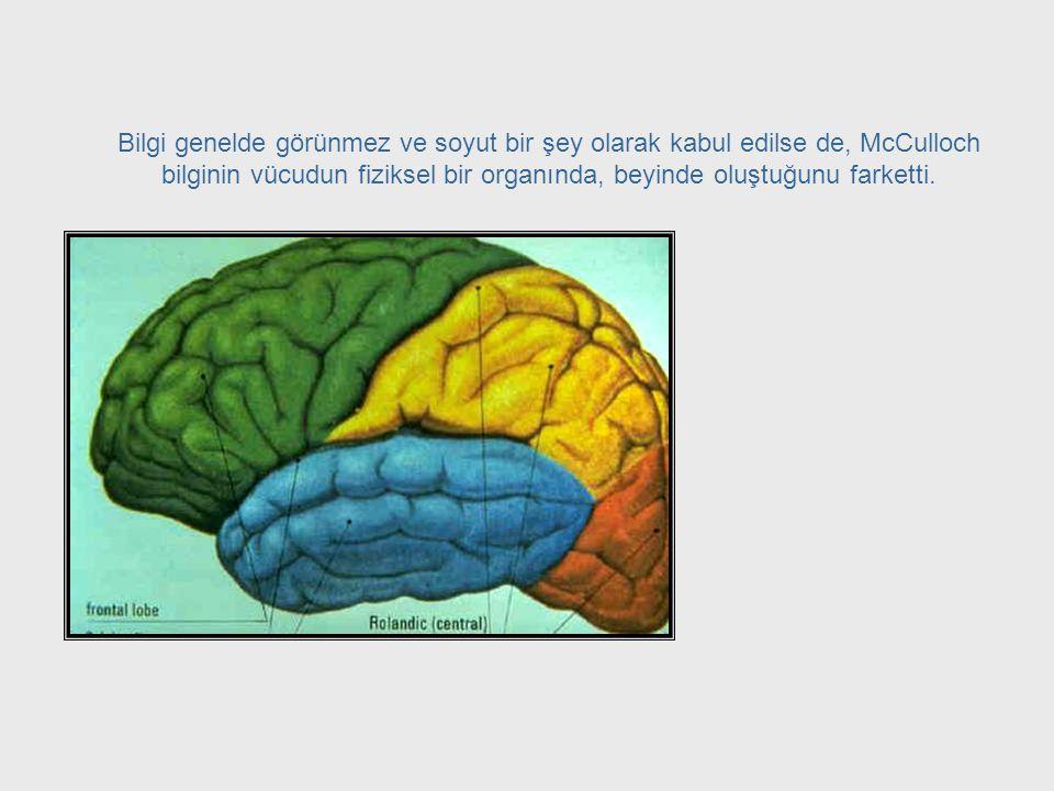Epistemoloji = Bilgi Bilimi McCulloch, nörofizyoloji bilimi ile felsefenin epistemoloji adı verilen ve bilgiyi inceleyen dalı arasında bir bağlantı ol