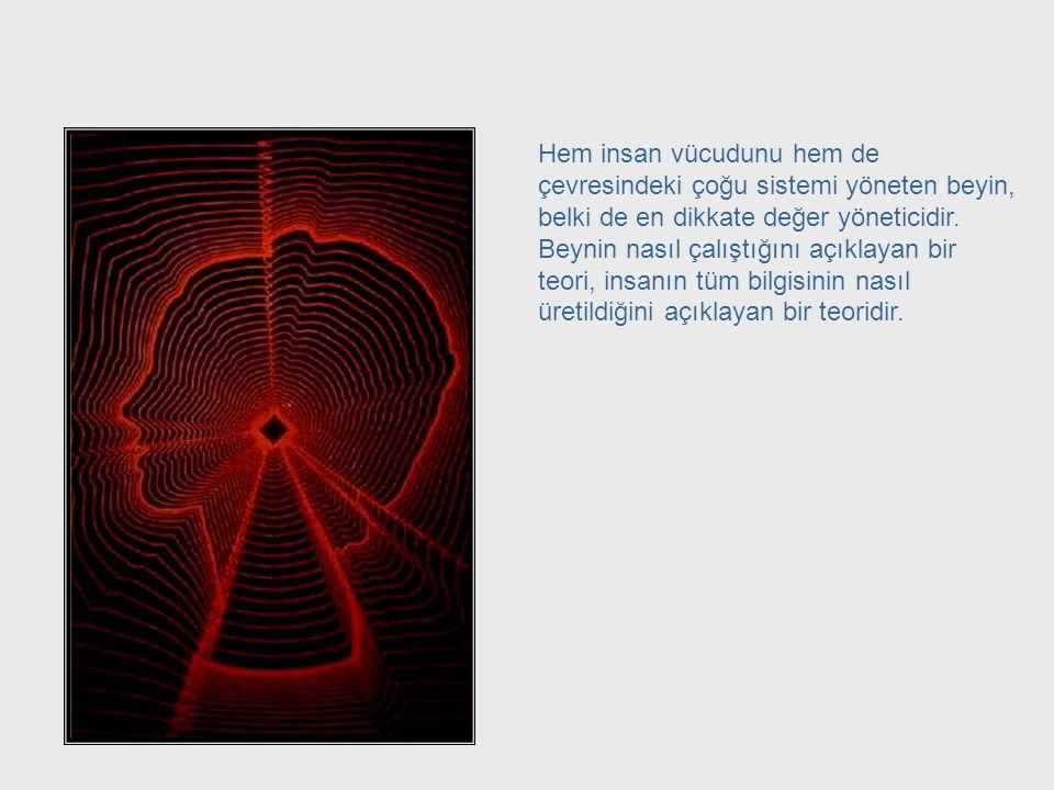 Sibernetik = Sistemlerin Yönetimi McCulloch'un çalışması sibernetikçiler için neden bu kadar önem taşır? Sibernetiğin sistemlerin yönetim bilimi olduğ