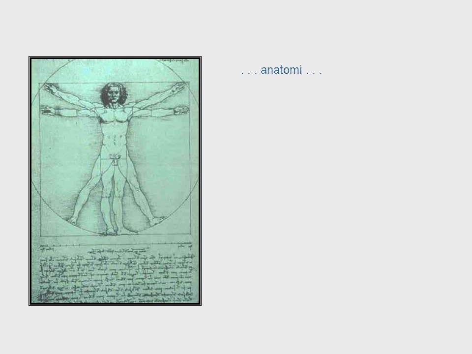 ... heykel... Da Vinci, cont. – Sculpture