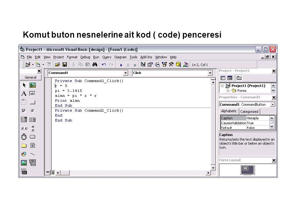 Komut buton nesnelerine ait kod ( code) penceresi