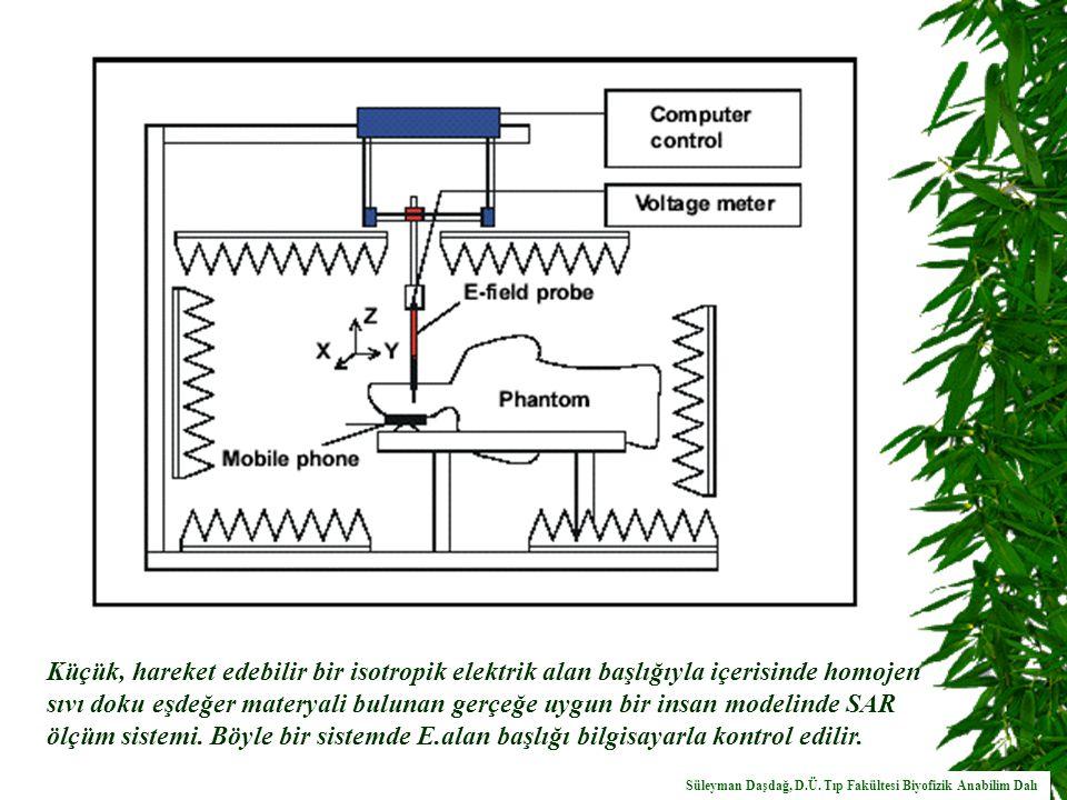 Küçük, hareket edebilir bir isotropik elektrik alan başlığıyla içerisinde homojen sıvı doku eşdeğer materyali bulunan gerçeğe uygun bir insan modelinde SAR ölçüm sistemi.