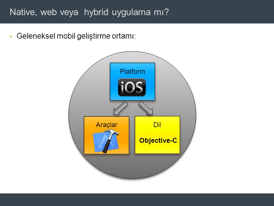 © 2011 Adobe Systems Incorporated. Native, web veya hybrid uygulama mı.