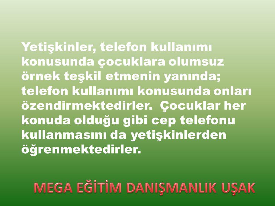 Türkiye İstatistik Kurumu (TÜİK) verilerine göre Türkiye de bilgisayar kullanma yaşı ortalama 8 oldu.