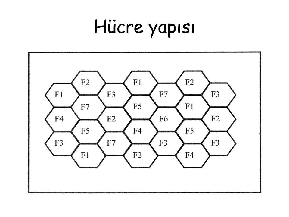 Hücre yapısı