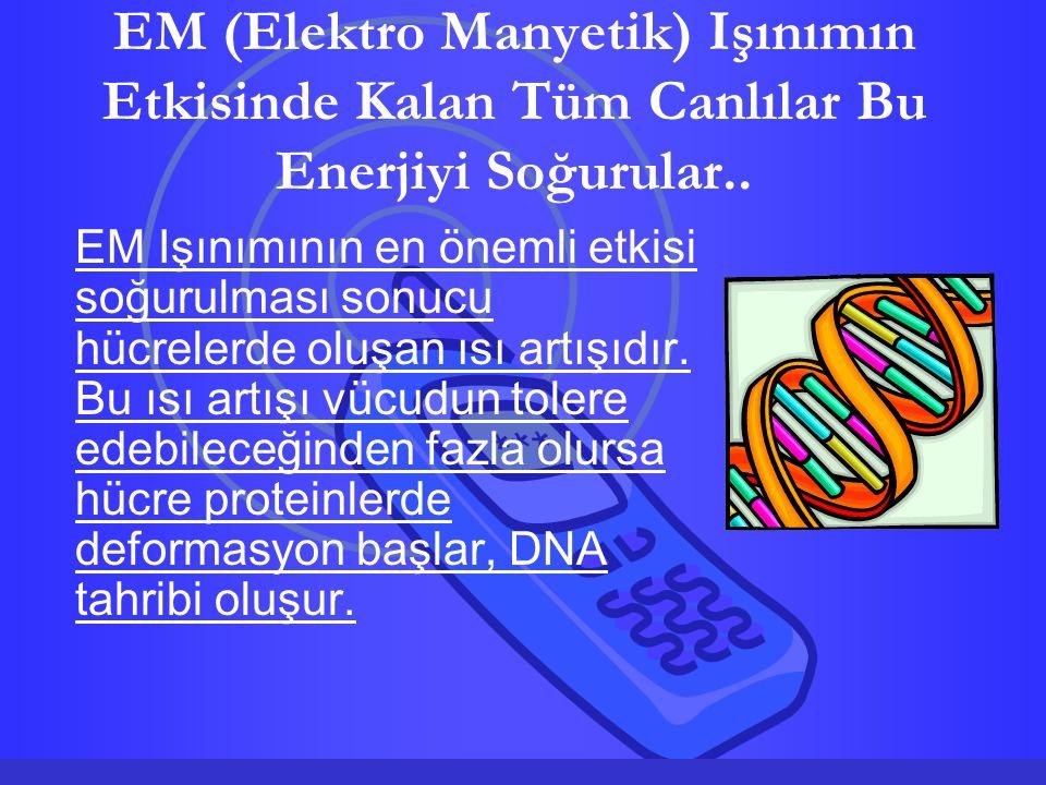 EM (Elektro Manyetik) Işınımın Etkisinde Kalan Tüm Canlılar Bu Enerjiyi Soğurular.. EM Işınımının en önemli etkisi soğurulması sonucu hücrelerde oluşa