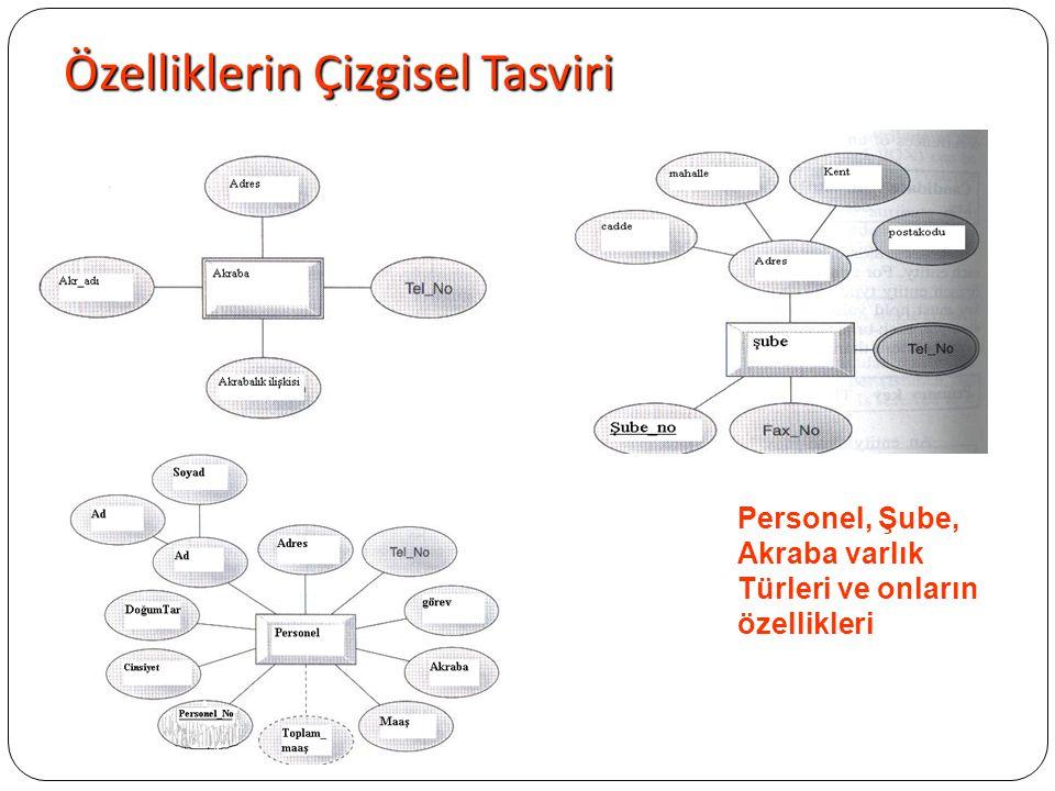 Özelliklerin Çizgisel Tasviri Personel, Şube, Akraba varlık Türleri ve onların özellikleri