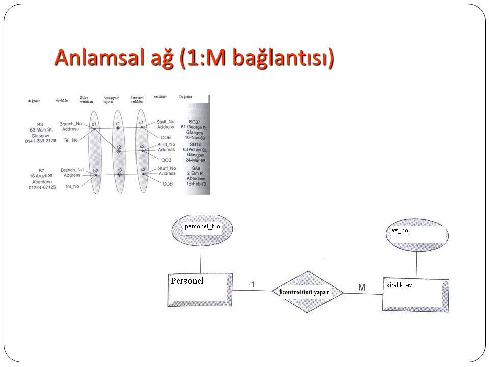 Anlamsal ağ (1:M bağlantısı)