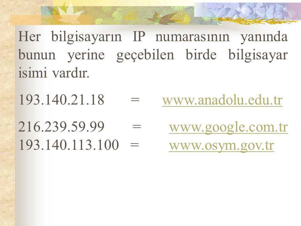 Her bilgisayarın IP numarasının yanında bunun yerine geçebilen birde bilgisayar isimi vardır. 193.140.21.18 = www.anadolu.edu.tr 216.239.59.99 = www.g