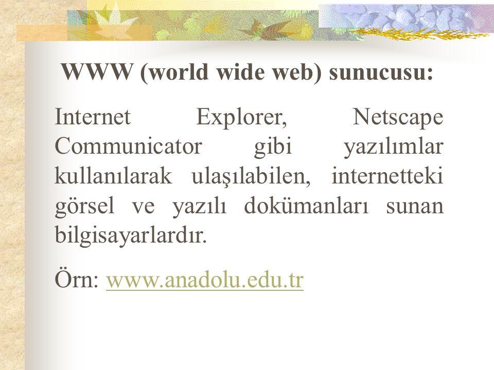 WWW (world wide web) sunucusu: Internet Explorer, Netscape Communicator gibi yazılımlar kullanılarak ulaşılabilen, internetteki görsel ve yazılı doküm
