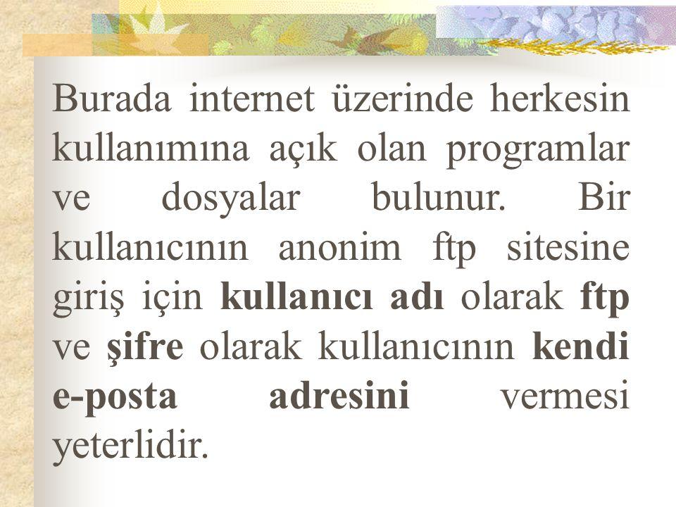 Burada internet üzerinde herkesin kullanımına açık olan programlar ve dosyalar bulunur. Bir kullanıcının anonim ftp sitesine giriş için kullanıcı adı