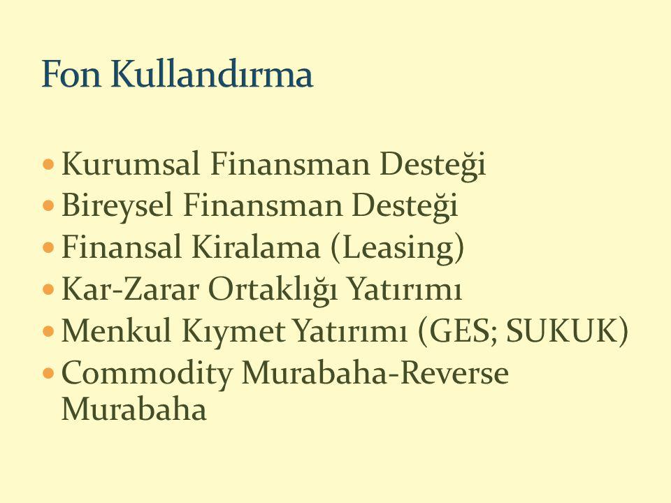 Kurumsal Finansman Desteği Bireysel Finansman Desteği Finansal Kiralama (Leasing) Kar-Zarar Ortaklığı Yatırımı Menkul Kıymet Yatırımı (GES; SUKUK) Commodity Murabaha-Reverse Murabaha