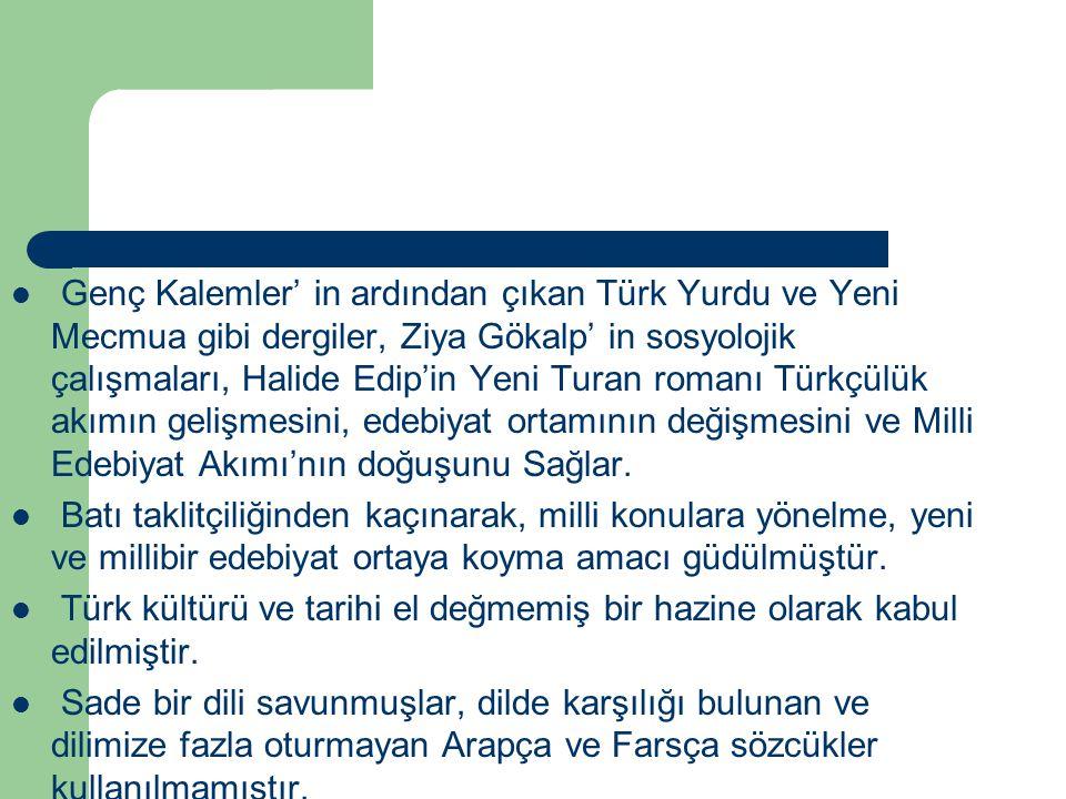 Genç Kalemler' in ardından çıkan Türk Yurdu ve Yeni Mecmua gibi dergiler, Ziya Gökalp' in sosyolojik çalışmaları, Halide Edip'in Yeni Turan romanı Tür