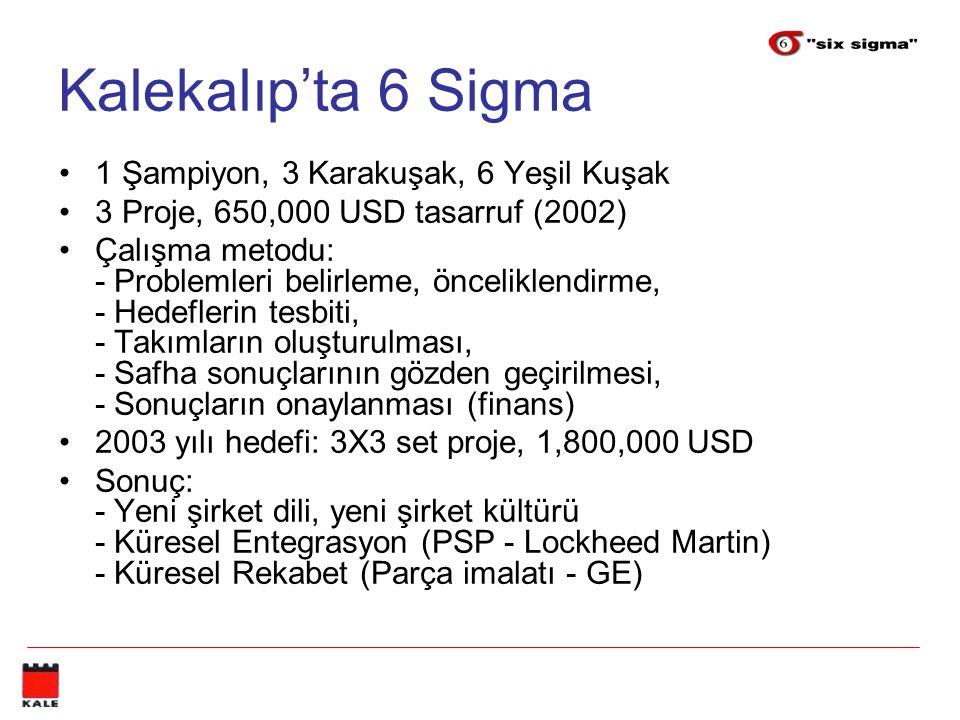 Kalekalıp'ta 6 Sigma 1 Şampiyon, 3 Karakuşak, 6 Yeşil Kuşak 3 Proje, 650,000 USD tasarruf (2002) Çalışma metodu: - Problemleri belirleme, önceliklendi