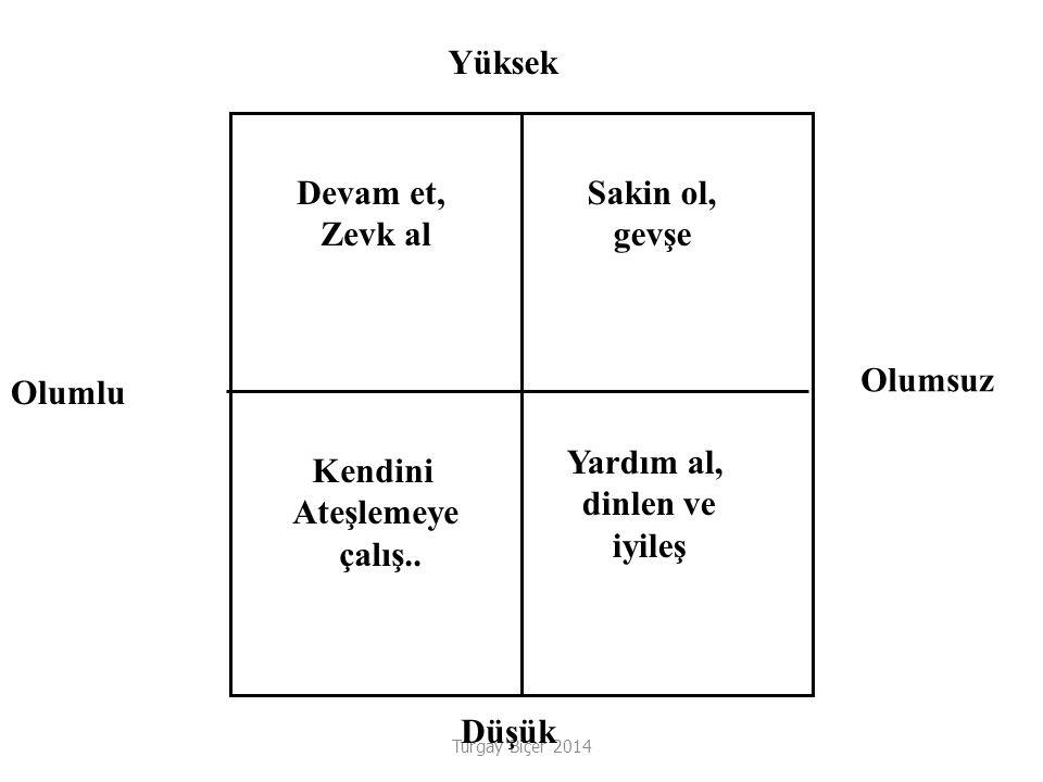 Turgay Biçer 2014 Devam et, Zevk al Sakin ol, gevşe Kendini Ateşlemeye çalış..