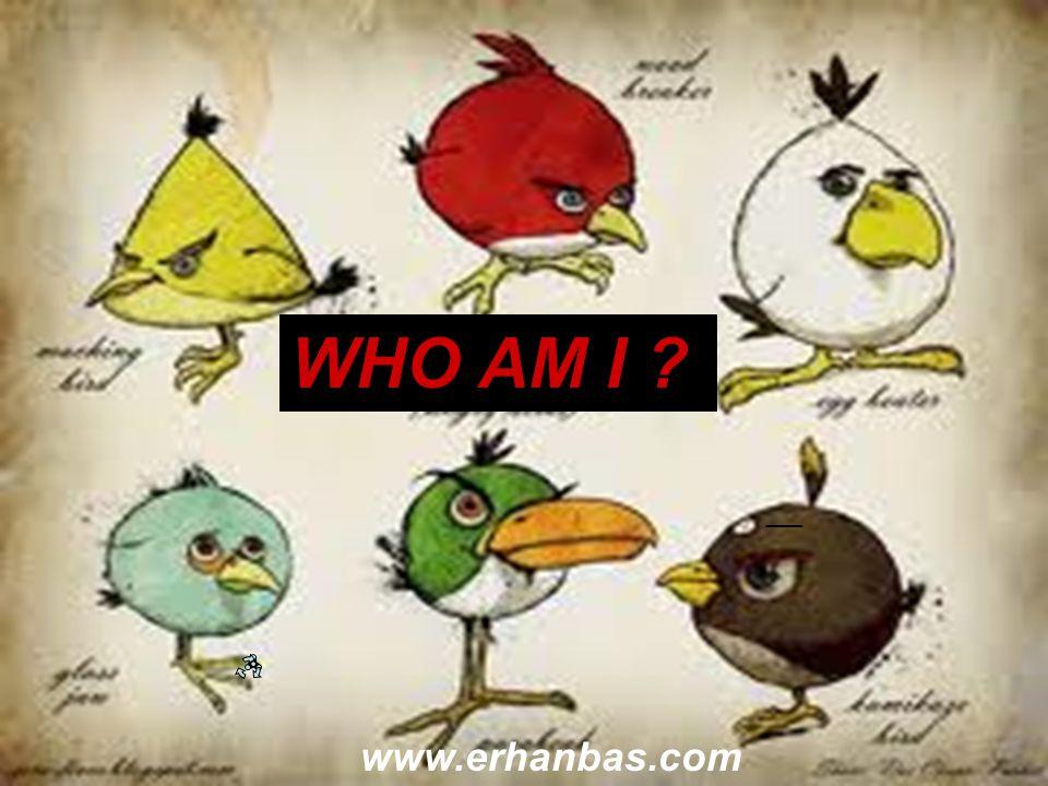 WHO AM I ? www.erhanbas.com