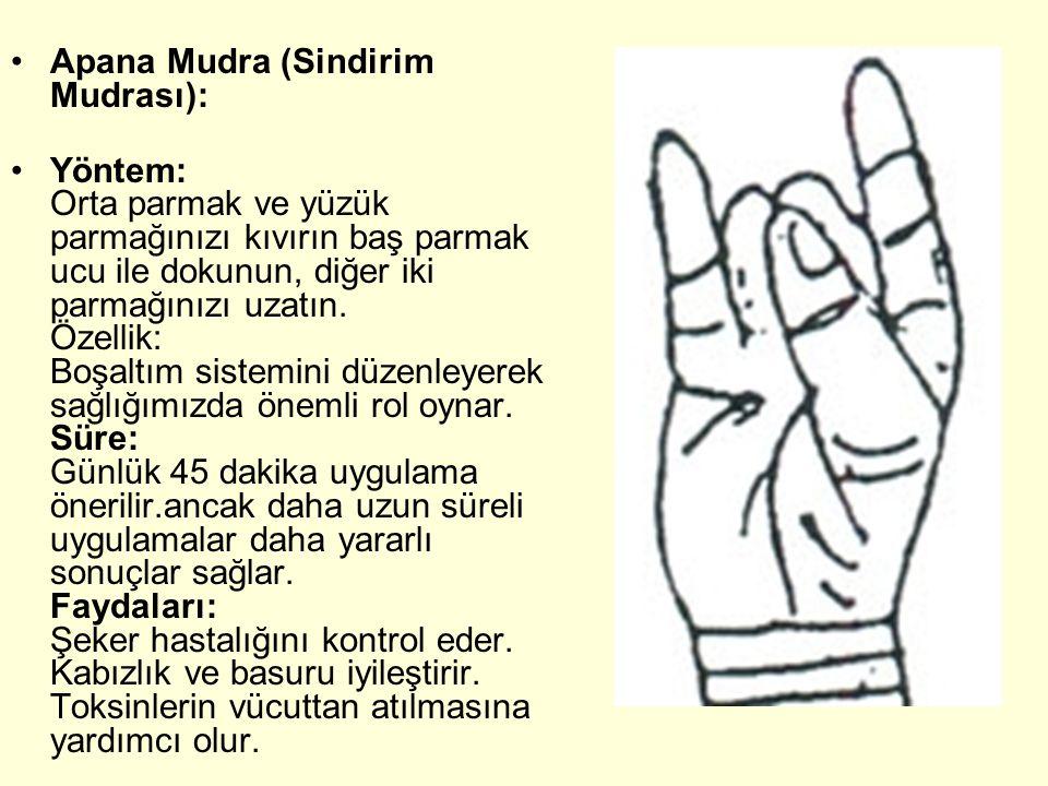 Apana Mudra (Sindirim Mudrası): Yöntem: Orta parmak ve yüzük parmağınızı kıvırın baş parmak ucu ile dokunun, diğer iki parmağınızı uzatın. Özellik: Bo
