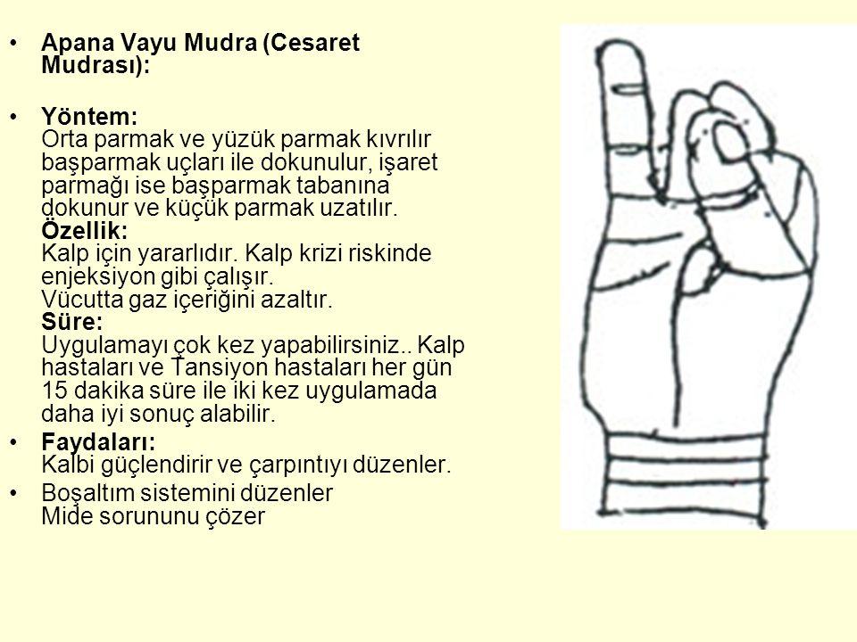 Apana Vayu Mudra (Cesaret Mudrası): Yöntem: Orta parmak ve yüzük parmak kıvrılır başparmak uçları ile dokunulur, işaret parmağı ise başparmak tabanına dokunur ve küçük parmak uzatılır.