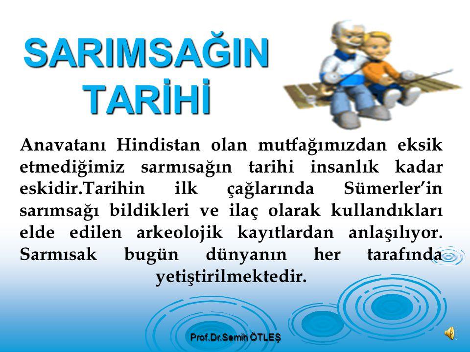 Prof.Dr.Semih ÖTLEŞ