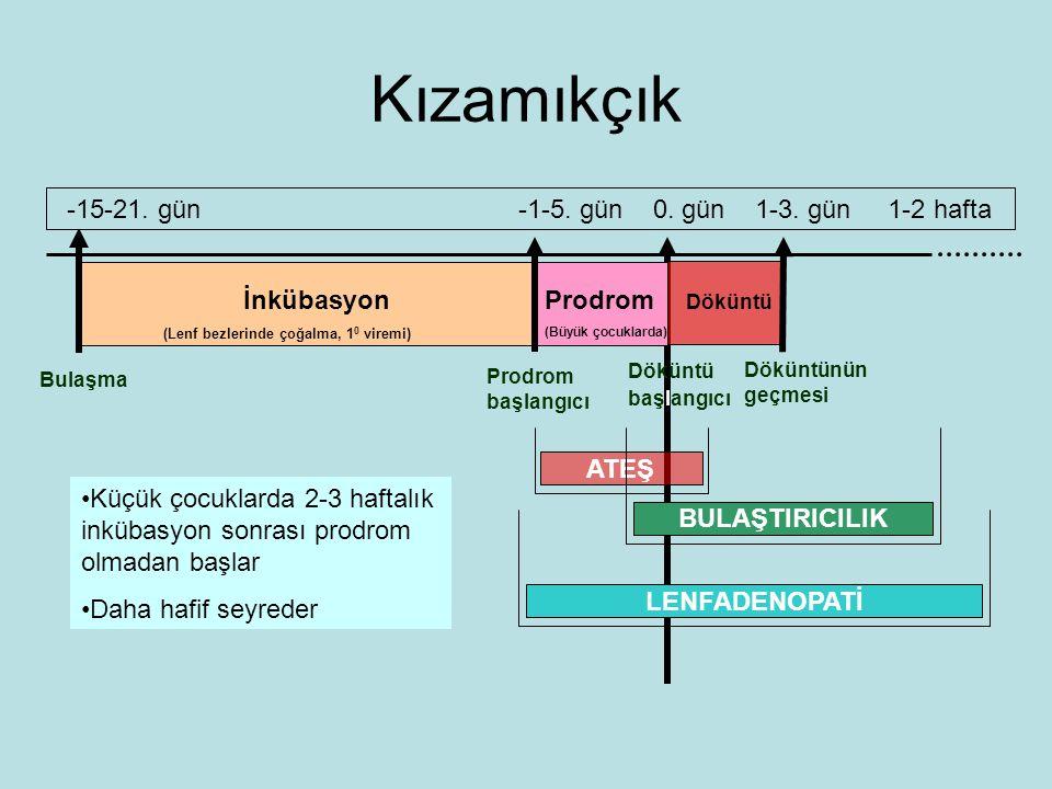 Kızamıkçık Bulaşma İnkübasyon (Lenf bezlerinde çoğalma, 1 0 viremi) Prodrom (Büyük çocuklarda) Döküntü Prodrom başlangıcı Döküntü başlangıcı Döküntünün geçmesi -15-21.