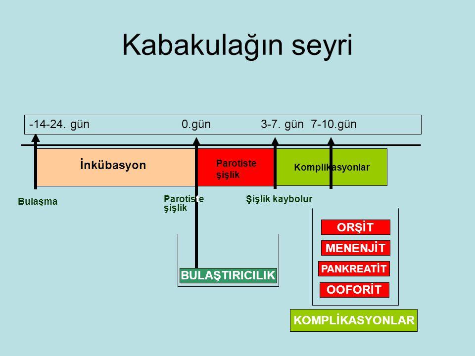 Kabakulağın seyri Bulaşma İnkübasyon Parotiste şişlik Şişlik kaybolur -14-24.