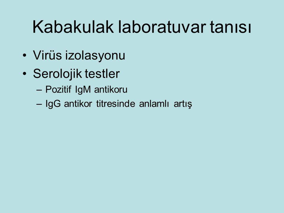 Kabakulak laboratuvar tanısı Virüs izolasyonu Serolojik testler –Pozitif IgM antikoru –IgG antikor titresinde anlamlı artış